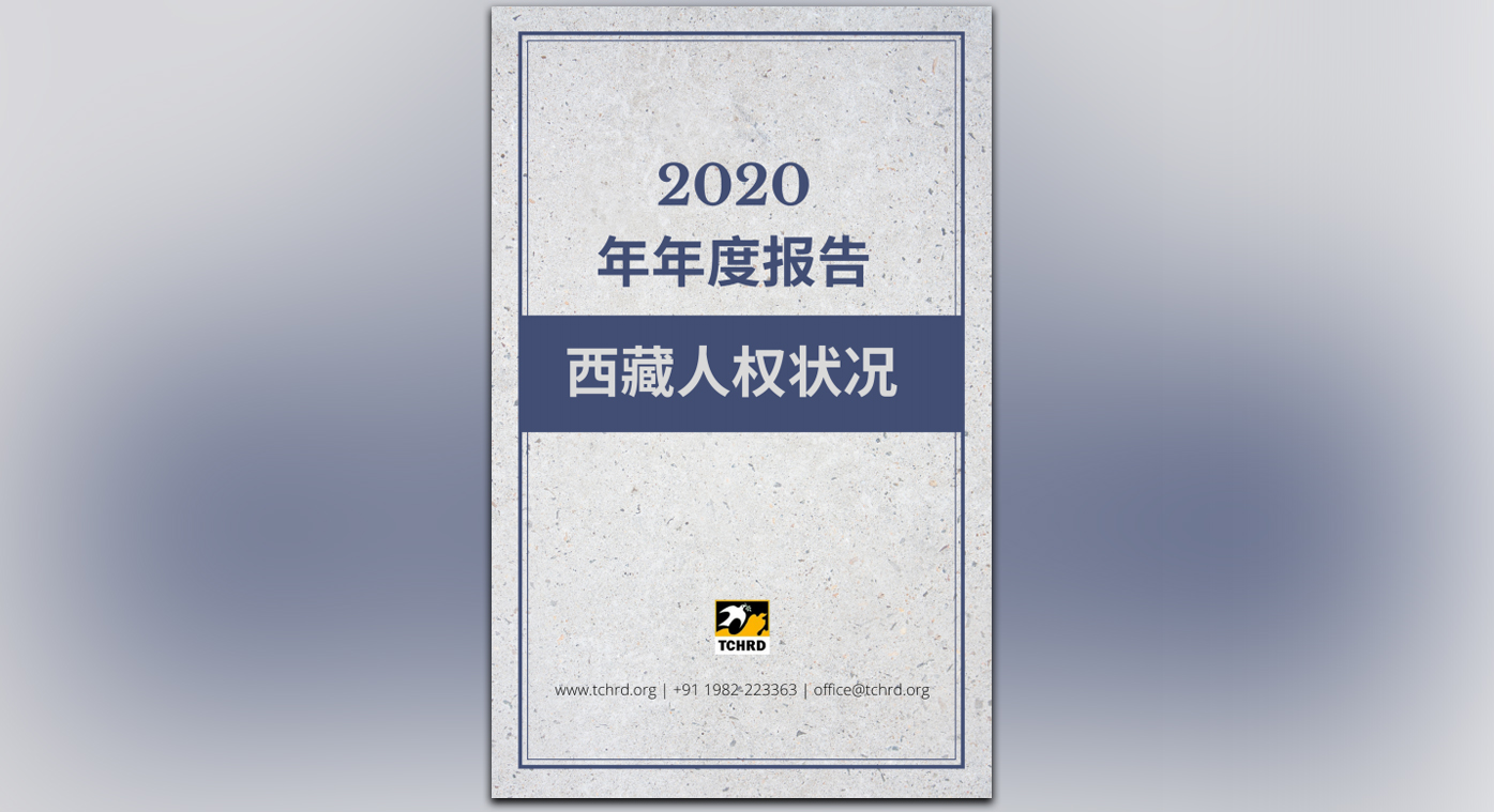 annual-report-chinese-tchrd2020